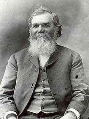 D.D. Palmer, D.C.